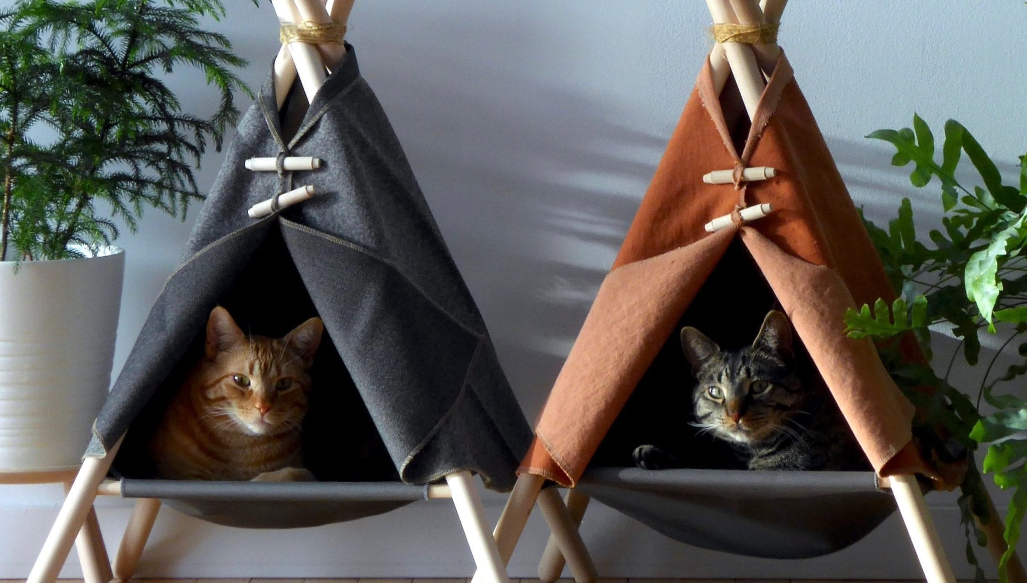 Picture of: Adventure Tent One Seriously Purrfect Cat Bed Only At Tinker